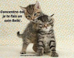 reiki-chat